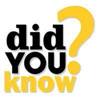 Bodex Yachting - Did you know?